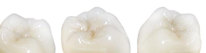 Denti Tribos 501